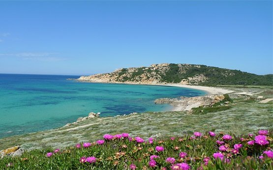 The coast of Sardinia